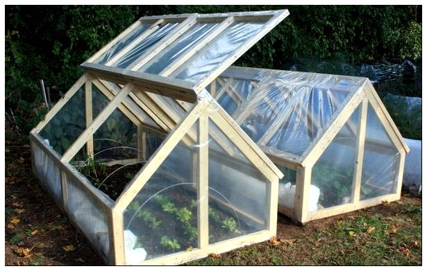diy_mini_greenhouse_6